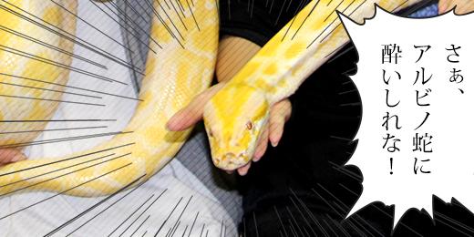 爬虫類好きを夢中にさせる動物園、iZooのススメ。