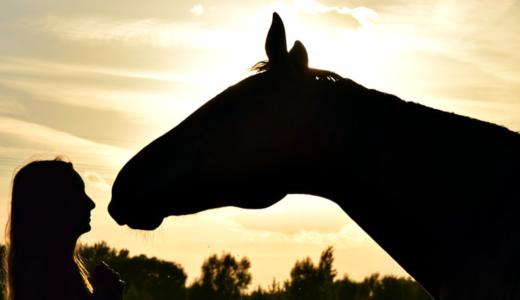 【1泊2日の小旅行】山梨で馬とセグウェイに乗ってきました!!