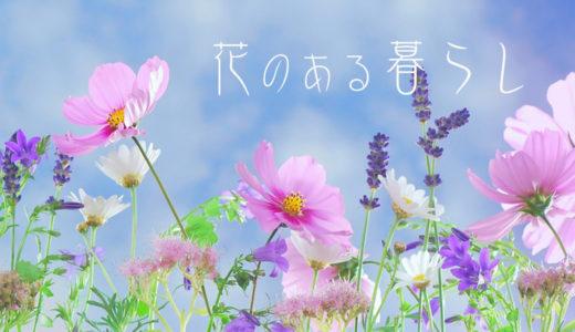【花のある暮らし月間】春の間、花のある暮らしをしてみた。